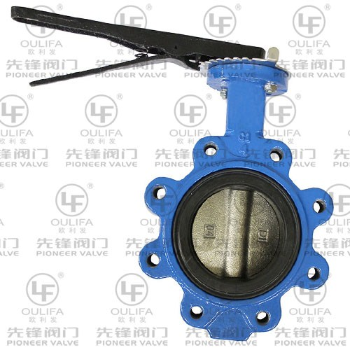 Lug and Wafer Type Butterfly Valve D71X